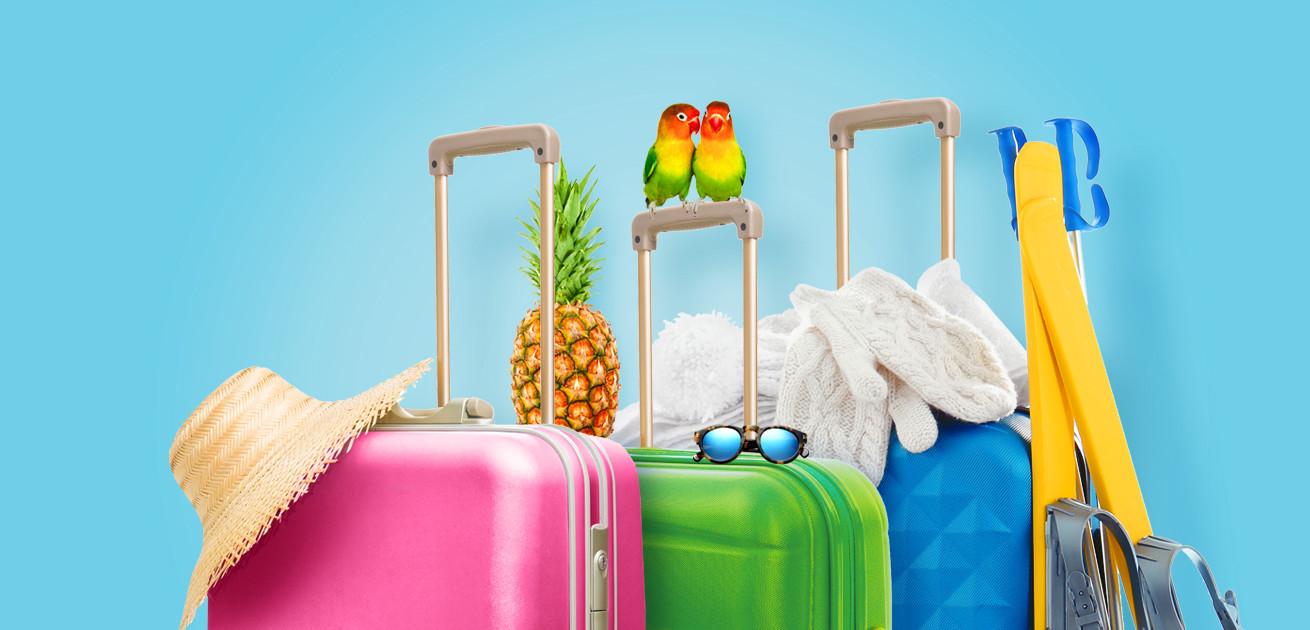 Saulėtos, egzotinės ar slidinėjimo atostogos. Kurios bus Jūsų?