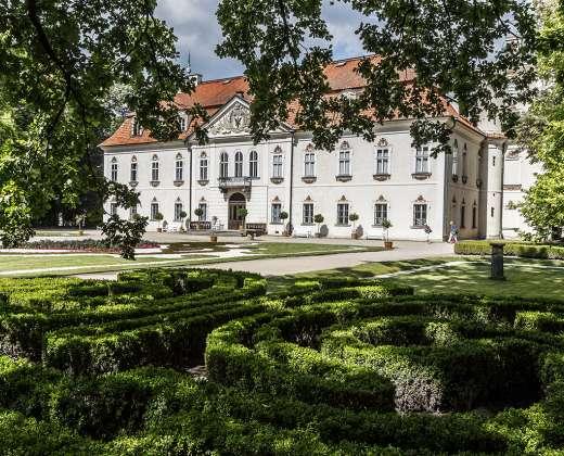 Lenkija. Radvilų rūmai
