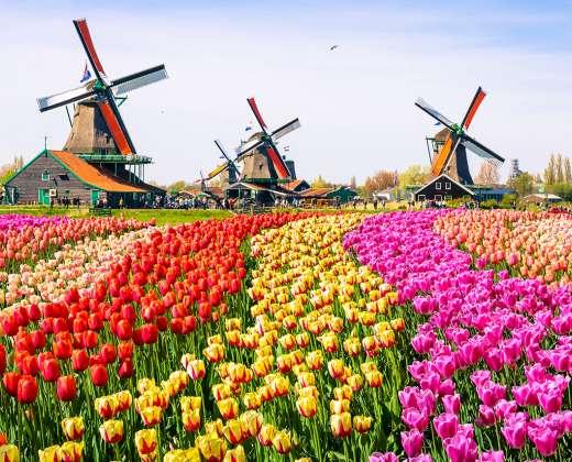 Olandija. Zaanse Shans
