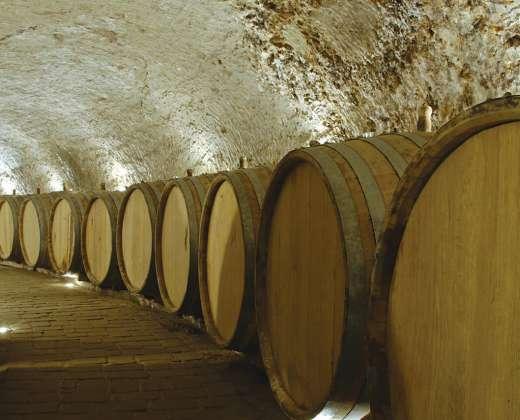 Vyno rūsiai