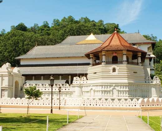 Šri Lanka. Budos Danties šventykla