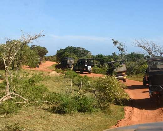 Šri Lanka. Yala nacionalinis parkas