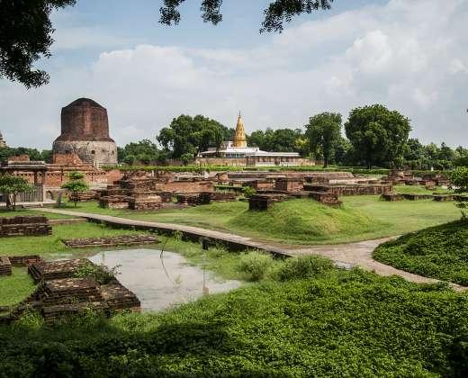 Indija. Sarnath