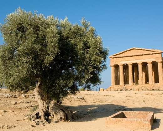 Sicilija. Agridžentas