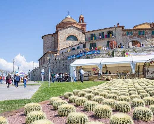 Italija. Castiglione del Lago miestelis