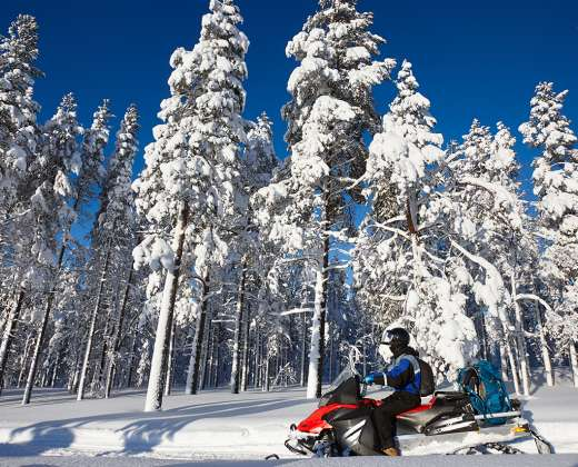 Laplandija. Sniegomobilių safaris