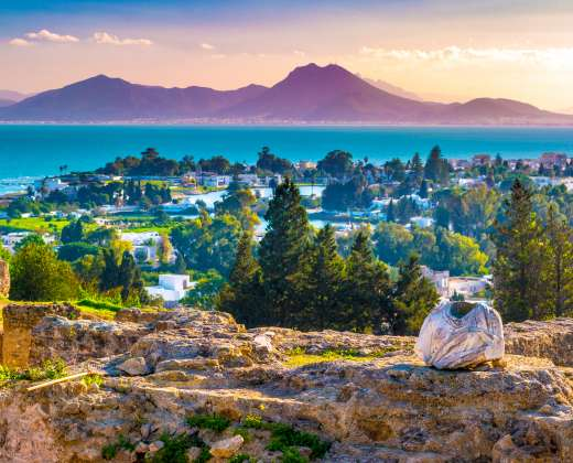 Tunisas. Kartagina